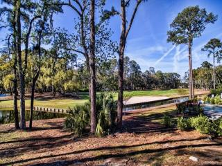 hilton-head-island 15 twin-pines 378744