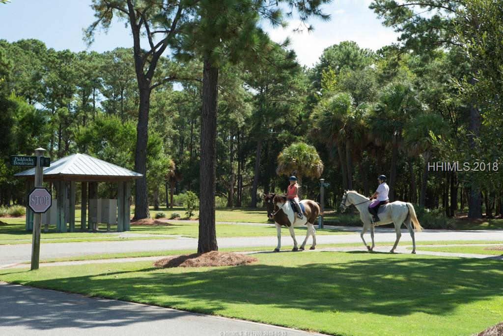 16-Welsh-Pony-HH-Off-Plantation-Hilton-Head-Island-387350-38.jpeg
