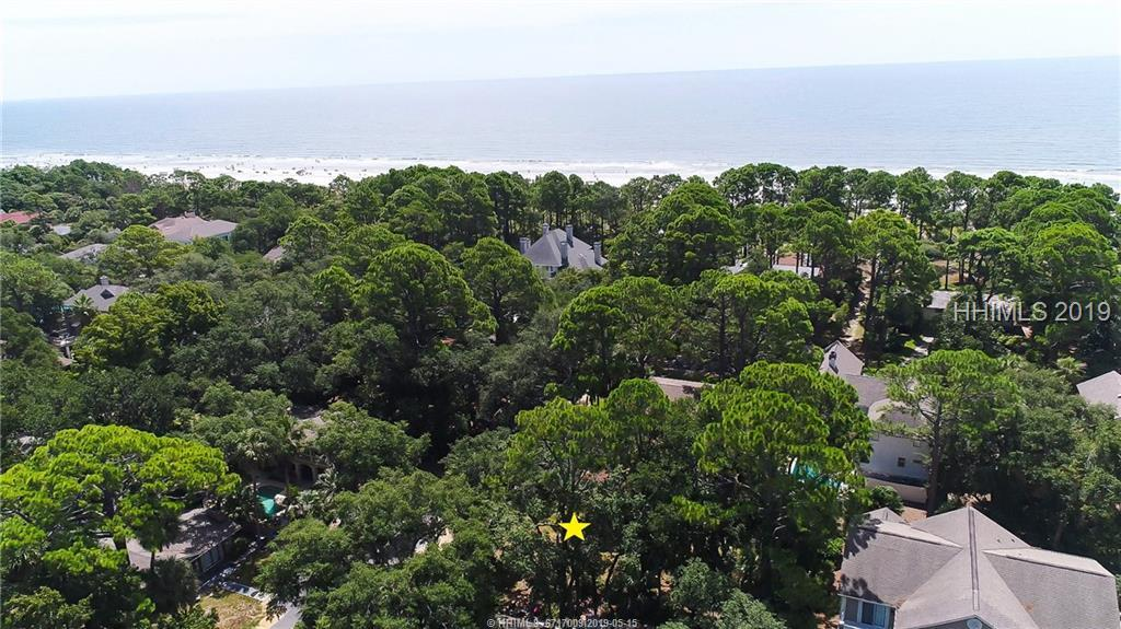 4-Elderberry-Forest-Beach-Hilton-Head-Island-375566-46.jpeg